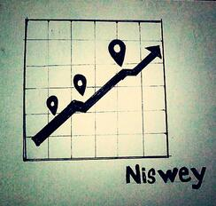 How team Niswey grows
