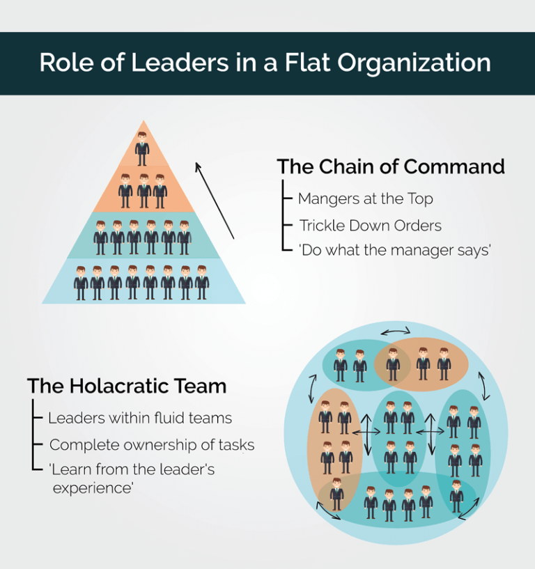Role-of-leaders-in-flat-organization-Holacracy-768x817